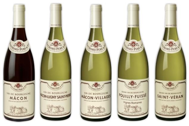 vin du maconnais(camping bourgogne)