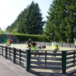 terrain-multisport-sport-loisirs-monts-maconnais