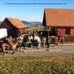 week end bourgogne - randonnée à cheval